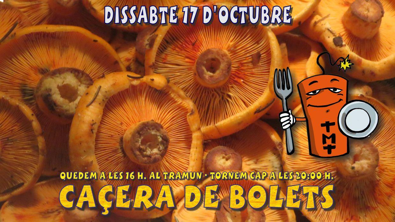 Bolets2